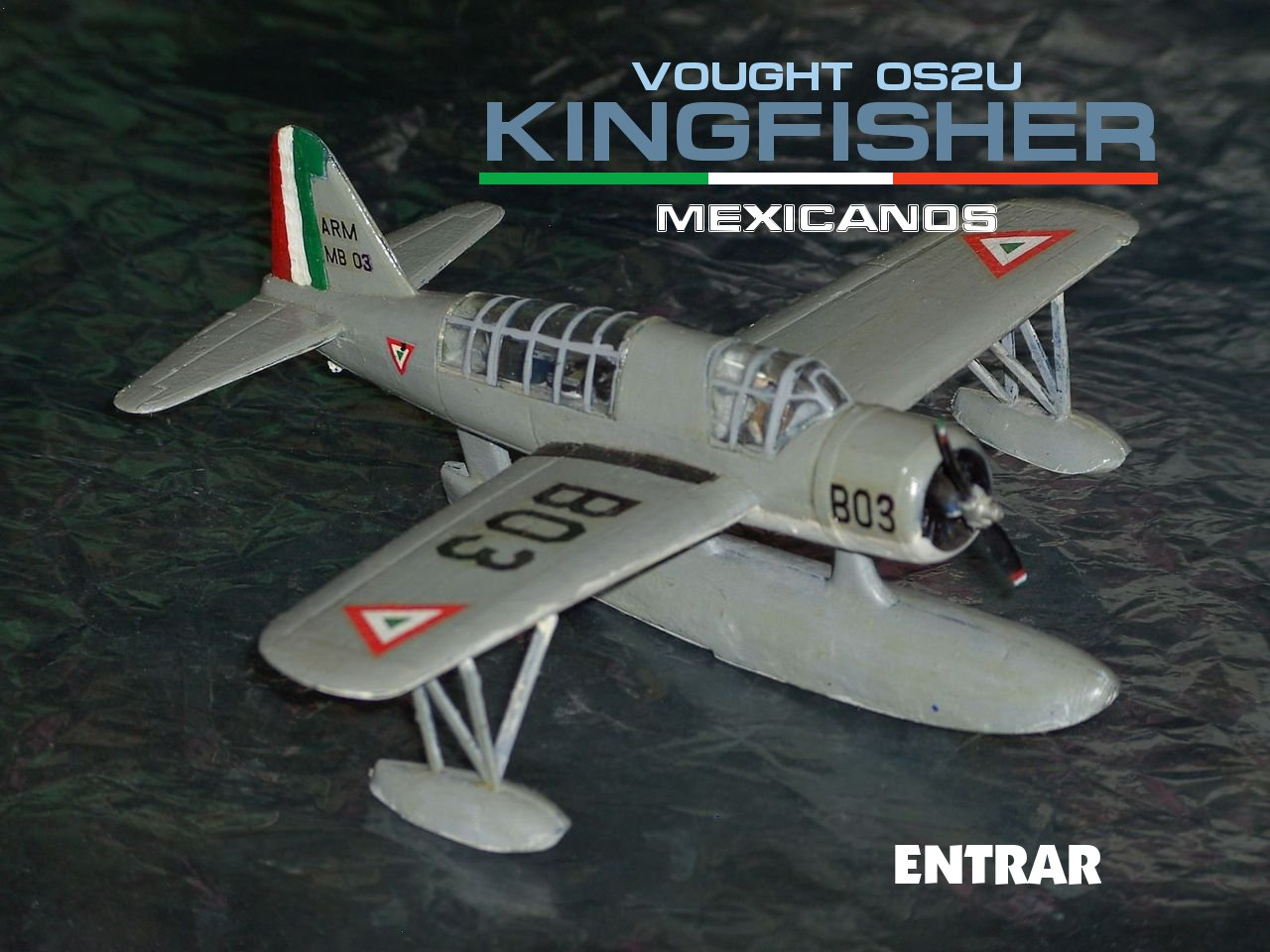 kingfisher_mexicano